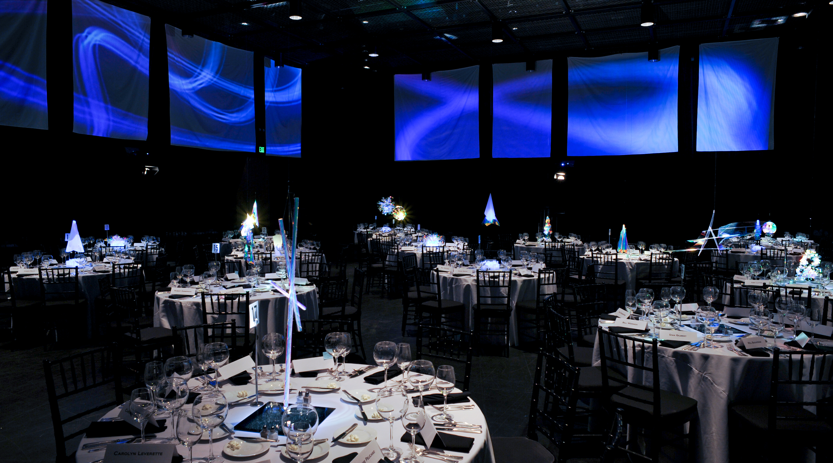 LightingDonorDinner (080)