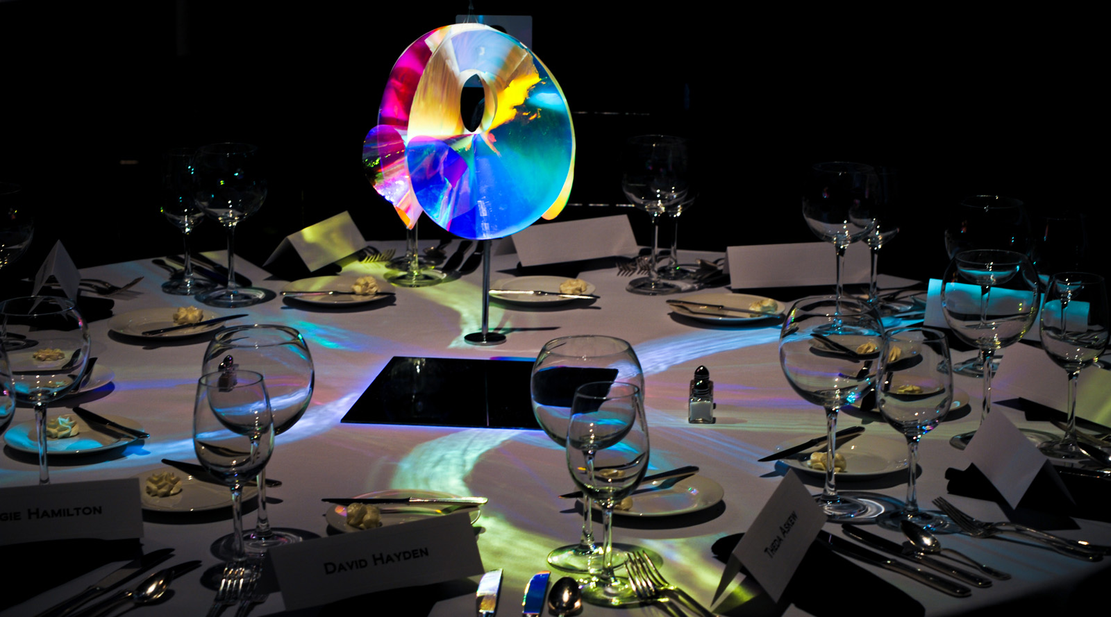 LightingDonorDinner (088)